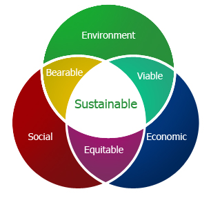 sustainability and environment issues in the Our common journey: a transition toward sustainability (1999)  many of the  worst and of the best-known environmental problems (eg, stratospheric ozone.