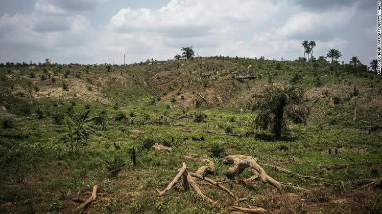 160504165005-liberia-palm-oil-deforestat